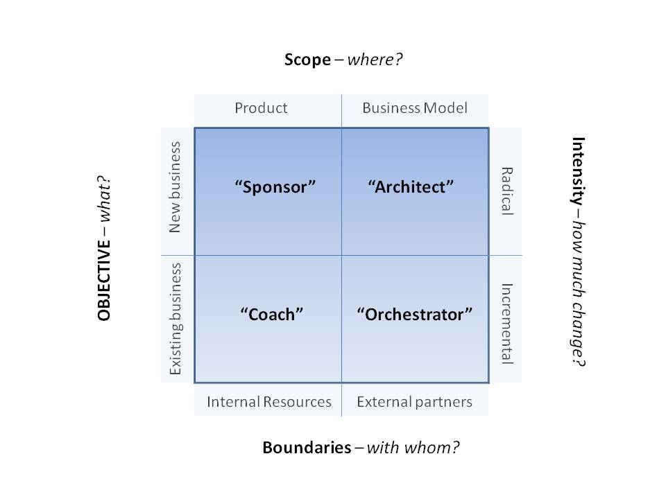 Innovation Strategy Roles Matrix (roles)